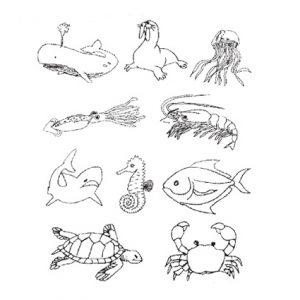Binatang Laut