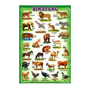 Carta Binatang